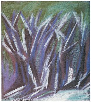 La forêt, l'hiver